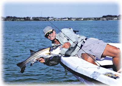 Fishing florida includes backwater and offshore fishing for Fly fishing miami
